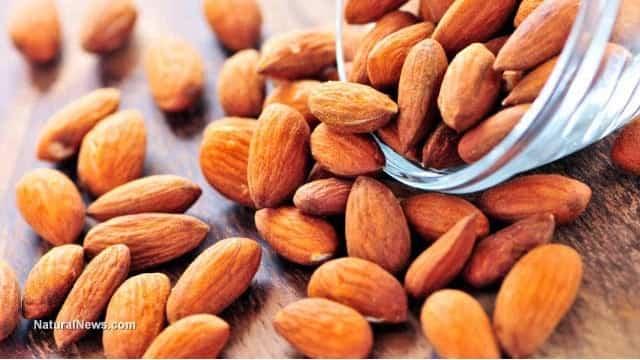 Snack sani: le mandorle fanno bene al cuore e tolgono la fame