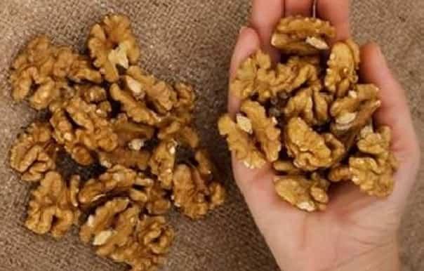 Basta mangiare un pugno di noci e aspettare 4 ore per notarne i benefici sul nostro organismo
