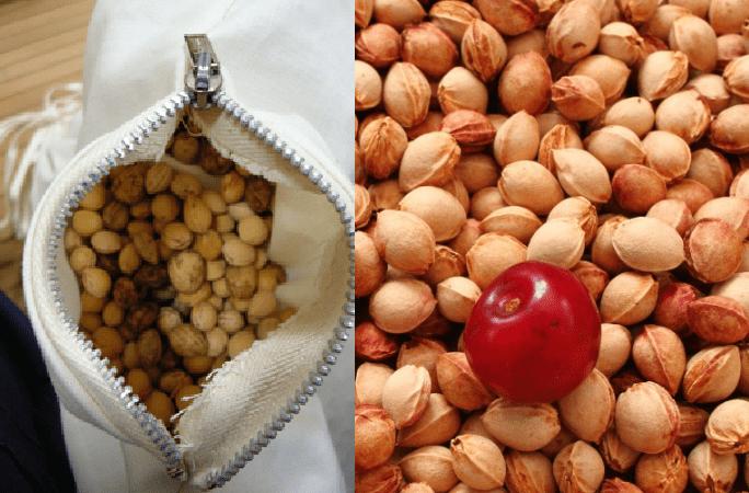 Cuscino con noccioli di ciliegia: Benessere per muscoli e cervicale. Come farlo