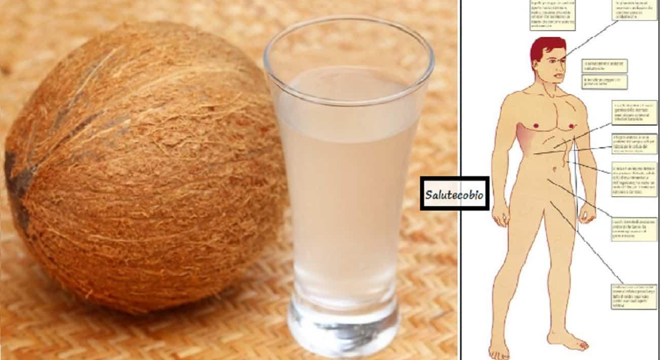 Acqua di cocco quando berla