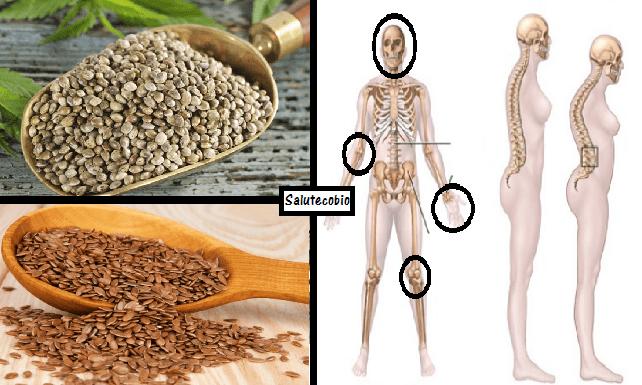 semi di canapa e semi di lino