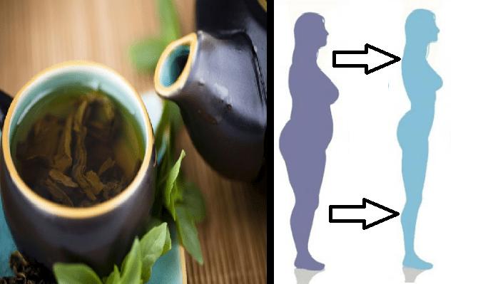 Salvia alloro e cannella: il mix che scioglie il grasso in eccesso
