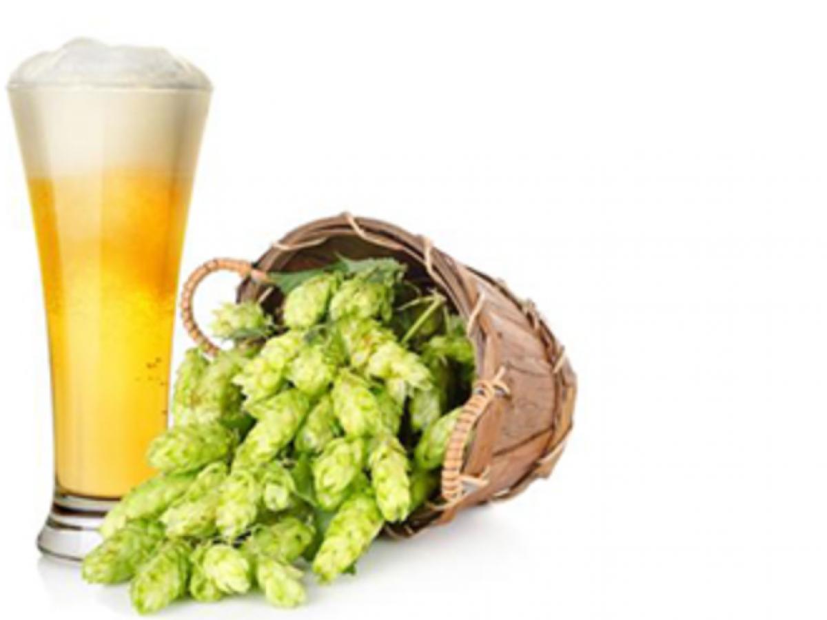 lievito di birra e erezione