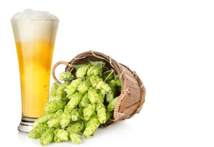 Birra :l'unica  bevanda alcolica che apporta benefici.Ecco quali