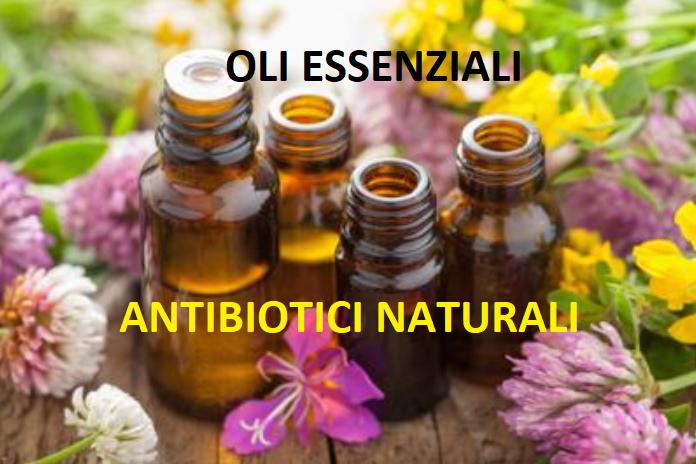4 oli essenziali naturali più forti degli antibiotici