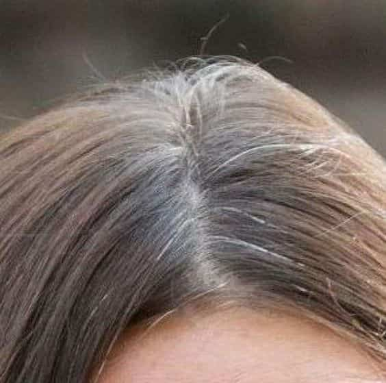 capelli grigi ricrescita