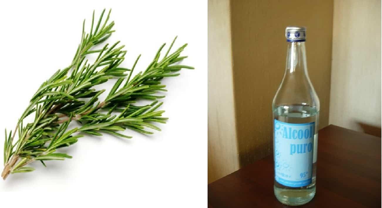 Alcol di rosmarino contro cellulite e vene varicose