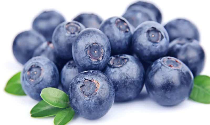 alimenti antitumorali mirtilli