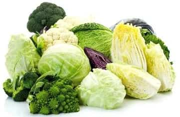 verdure crucifere alimenti antitumorali