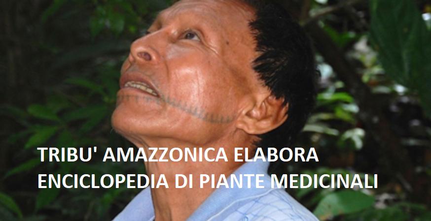 Matsés Tribù amazzonica elabora enciclopedia di piante medicinali