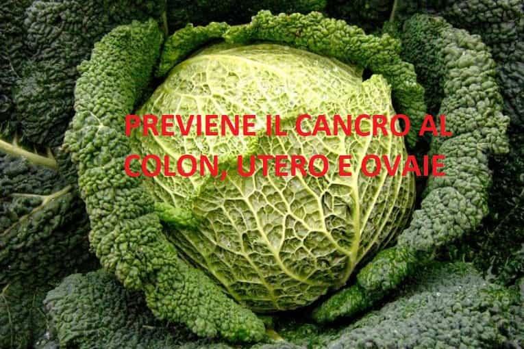 il cavolo per la prevenzione del cancro al colon utero e ovaie