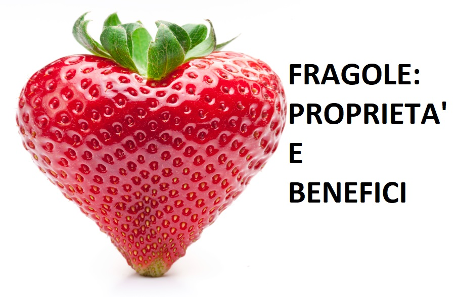 fragole proprietà e benefici