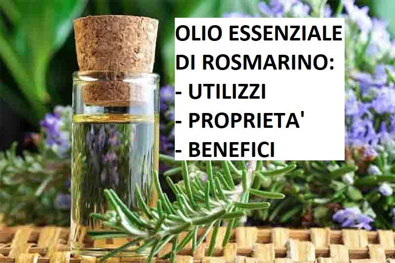 Olio essenziale di rosmarino: utilizzi proprietà e benefici