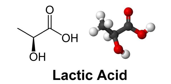 acido lattico cos'è