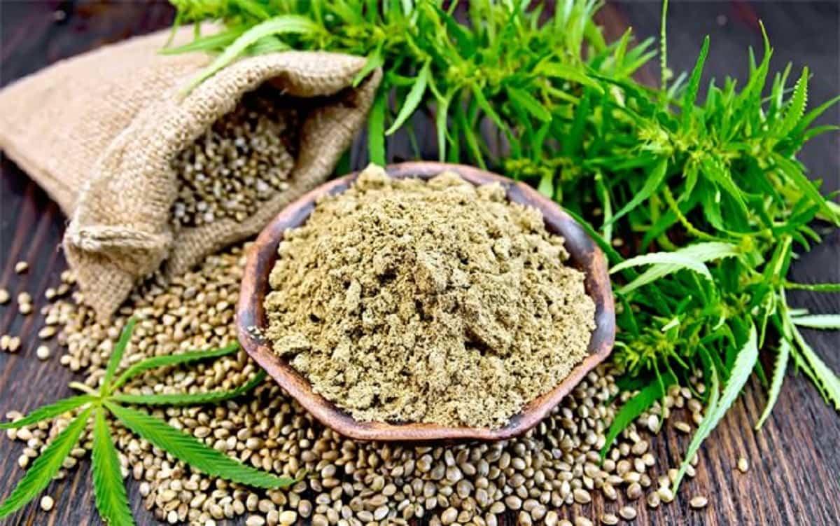 Gli effetti benefici dell'utilizzo in cucina della farina di canapa