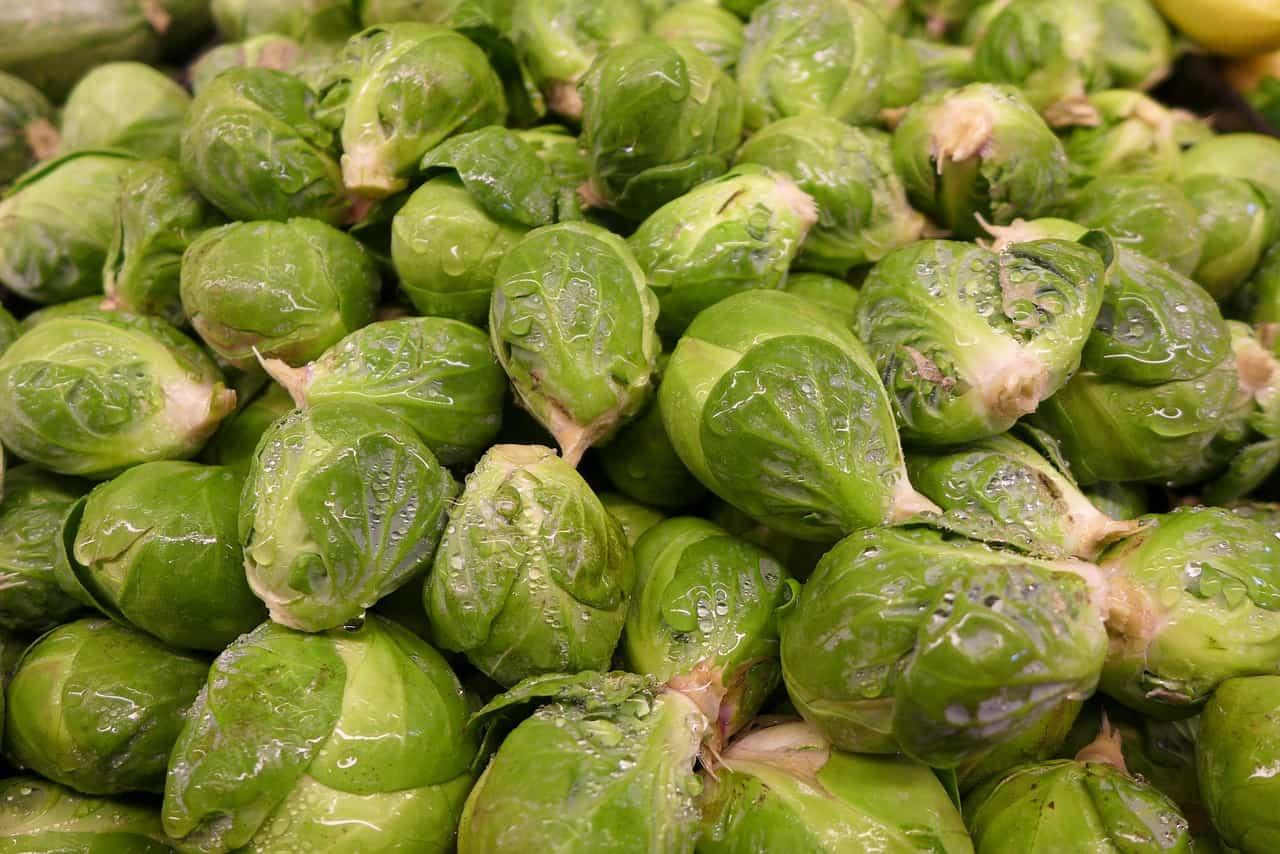 Cavolini di Bruxelles: proprietà nutrizionali, benefici e usi in cucina