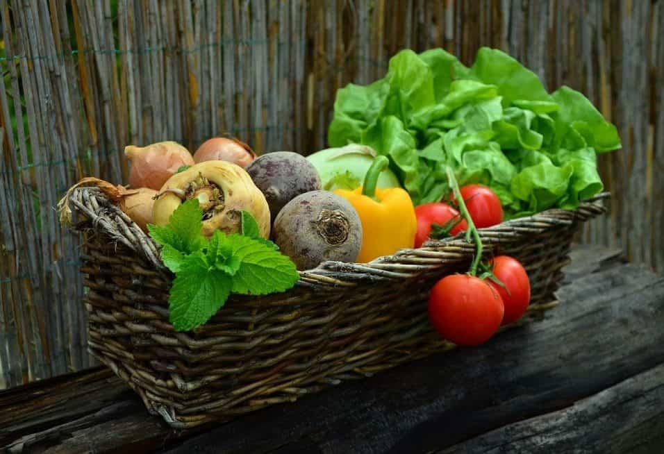 elenco delle verdure che contengono ferro