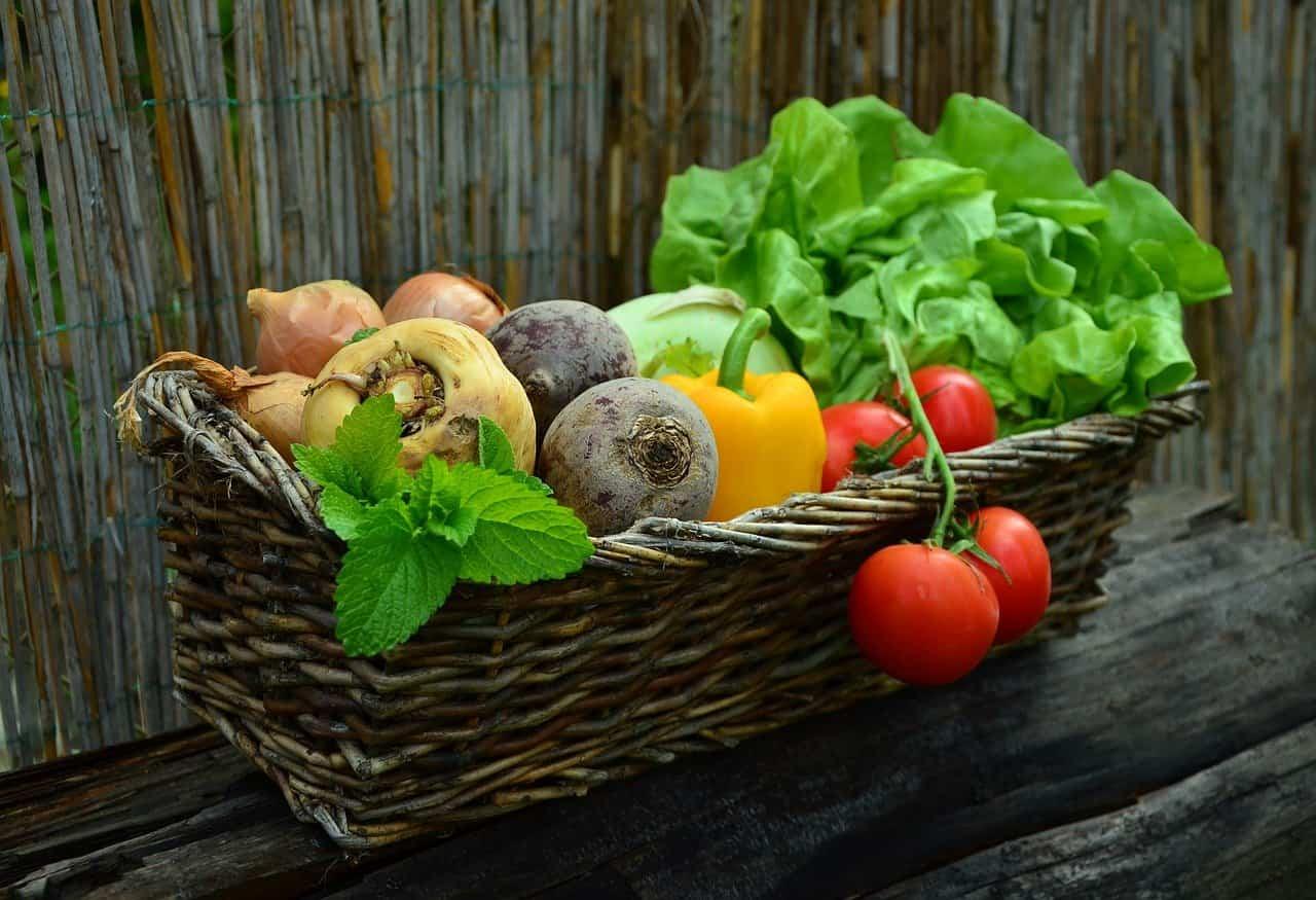 Verdure che contengono ferro: la lista e le dosi