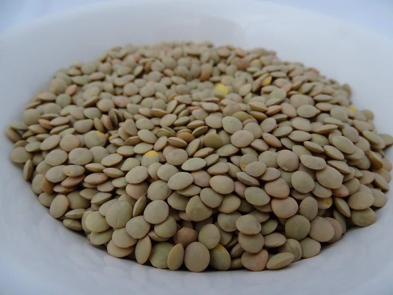 lenticchie proteine