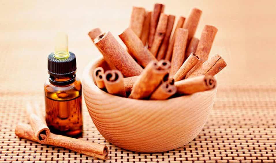 olio di cannella antisettico antimicotico