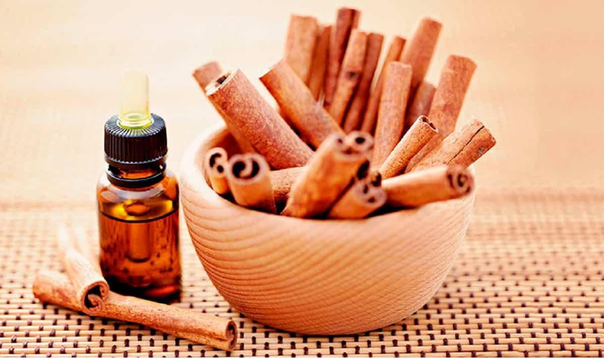 Olio di cannella: proprietà, benefici, controindicazioni e come si prepara