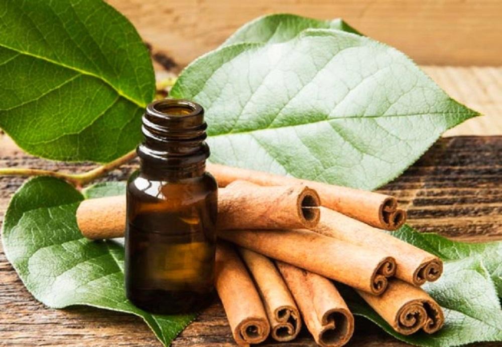 olio di cannella proprietà e benefici