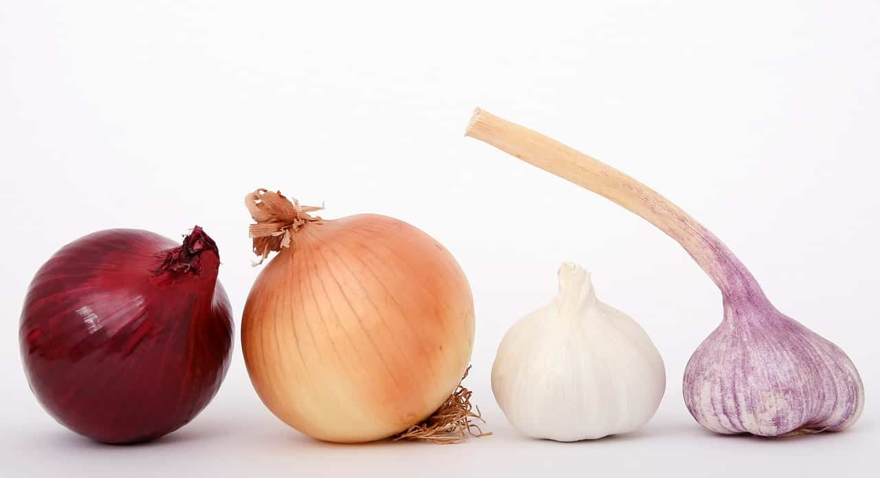aglio e cipolla per abbassare il colesterolo