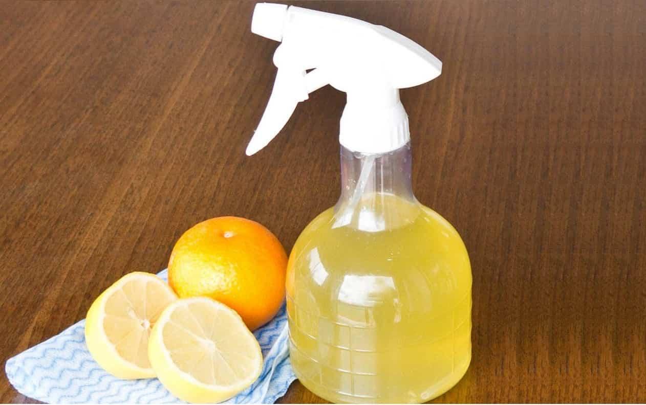I migliori disinfettanti naturali per la casa