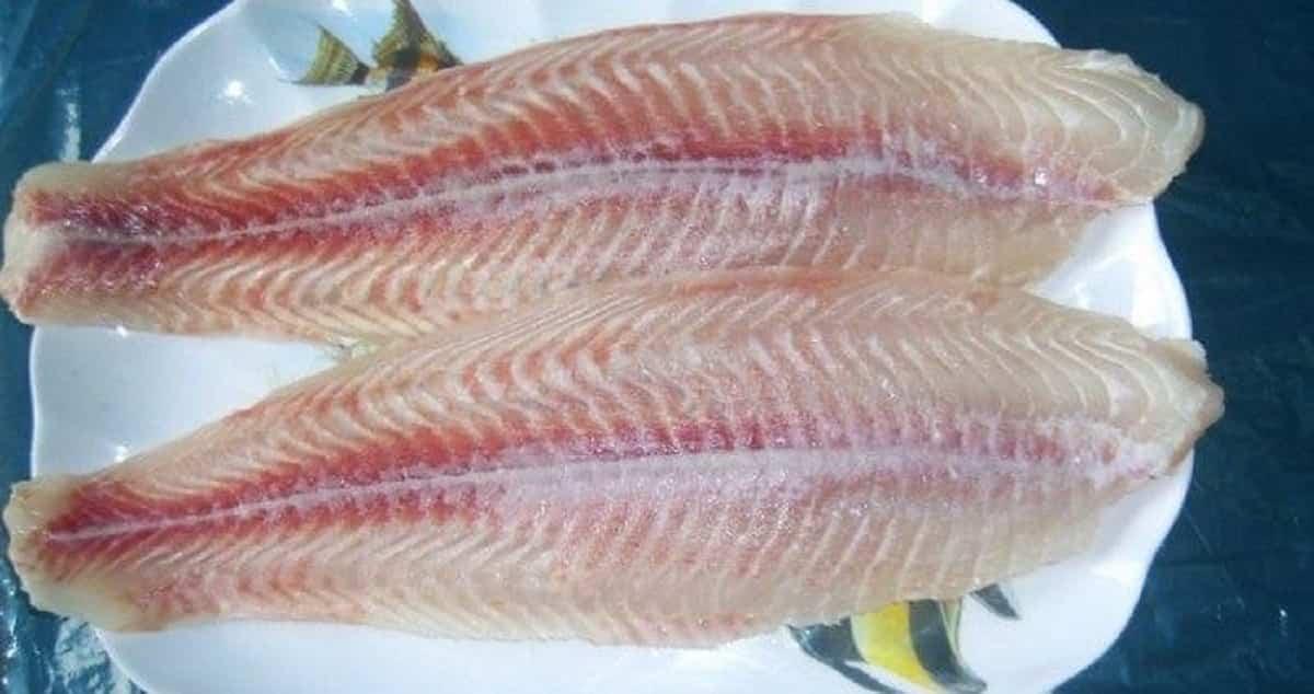 Pangasio tossico: troppo mercurio nel pesce che danno nelle mense ai bambini