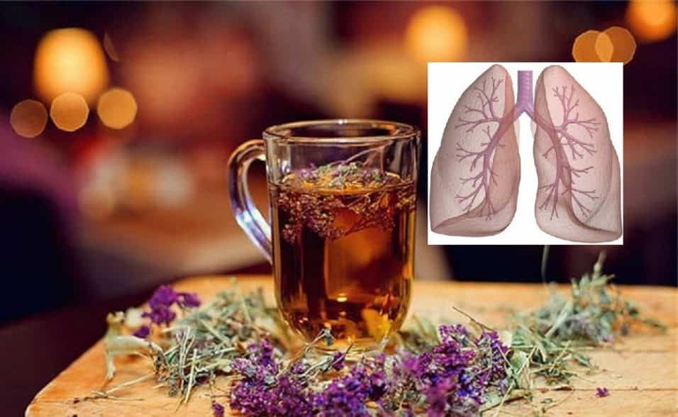 timo contro infezioni respiratorie streptococco e influenza