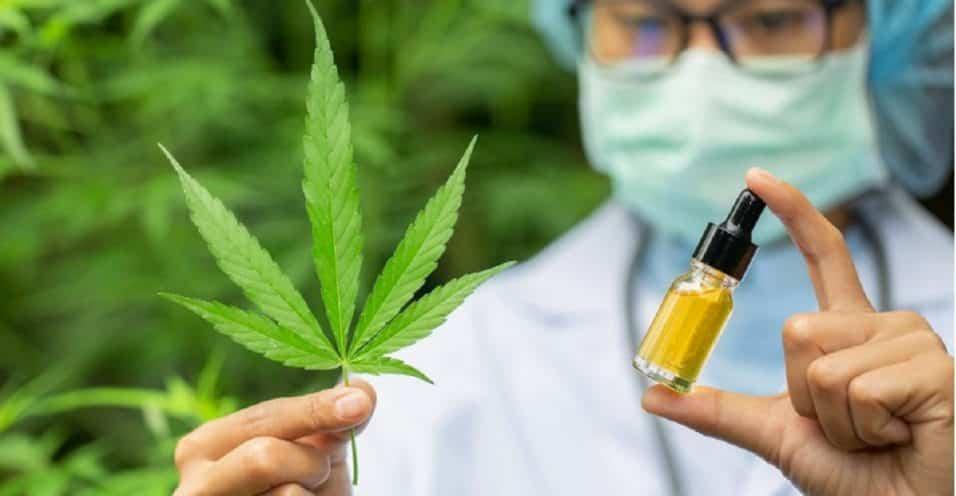 olio di canapa case farmaceutiche