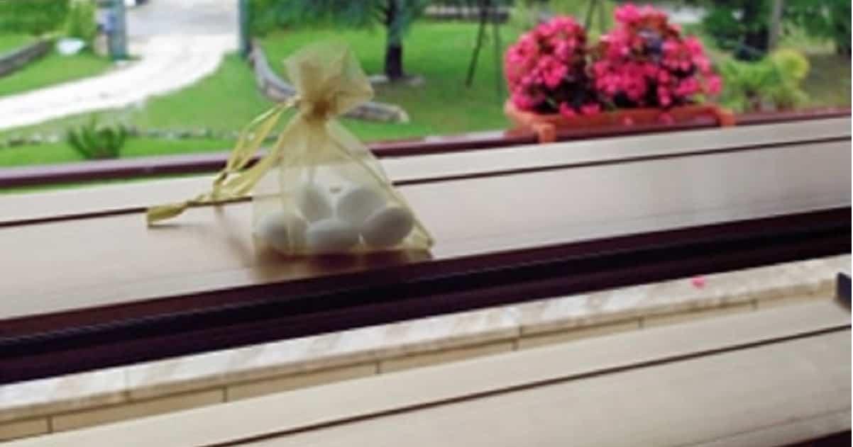 Basta un sacchetto di Naftalina sulle finestre per allontanare vari insetti da casa