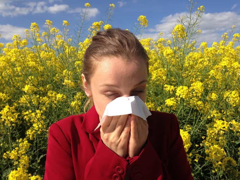 Sintomi allergia di settembre